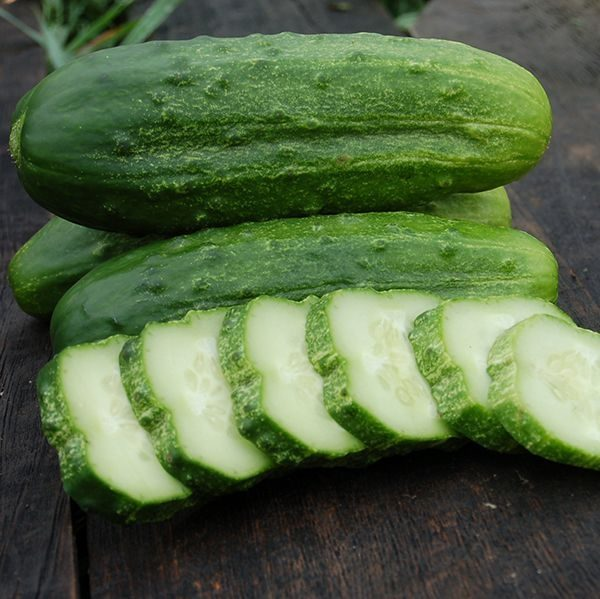 National Pickling Cucumbers