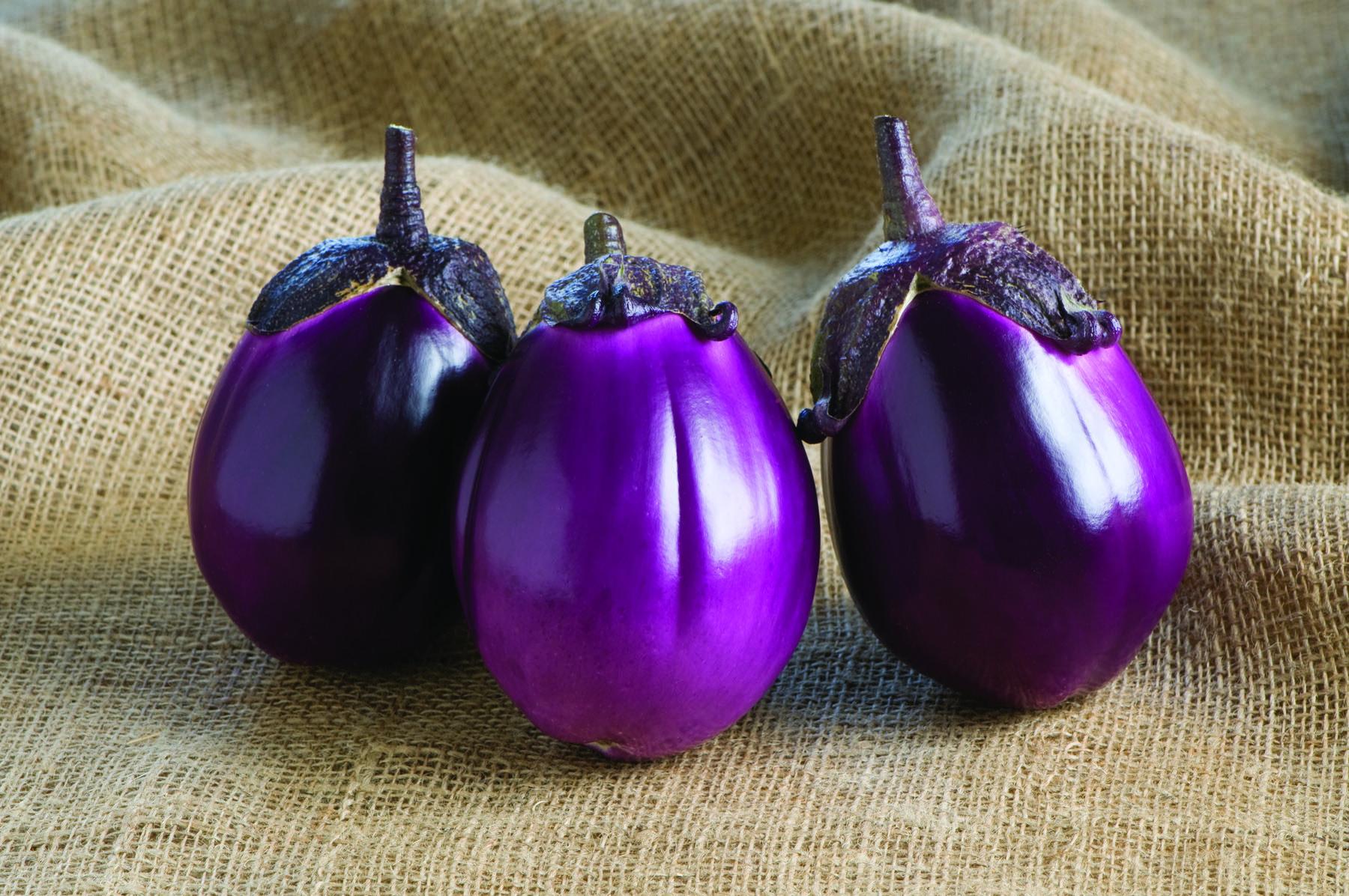 Beatrice Eggplant