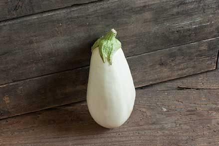 Clara Eggplant