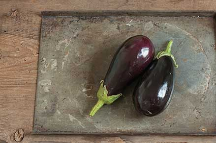 Galine Eggplant
