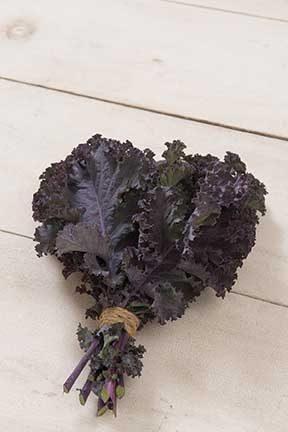 Scarlet Kale