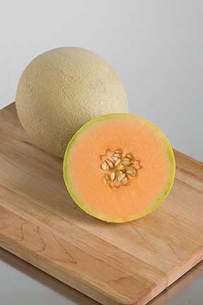 Sarah's Choice Melon