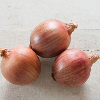 Blush Onion