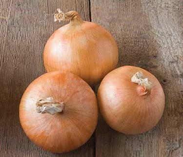 Candy Onion