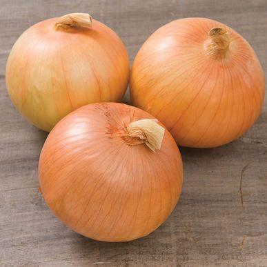 Expression Onion