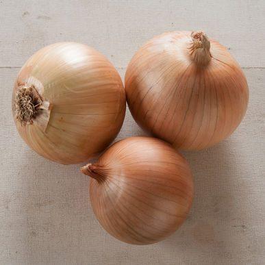 Scout Onion