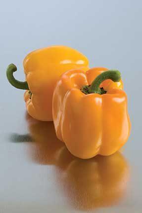 Sweet Sunrise Pepper
