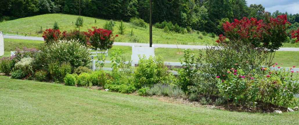 Pollinator Garden | Banner Greenhouses