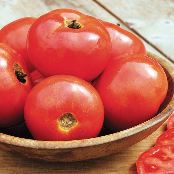 Iron Lady Tomato