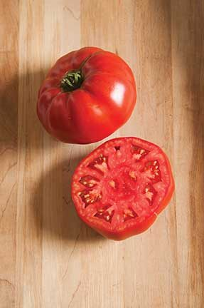 Marbonne Grafted Tomato
