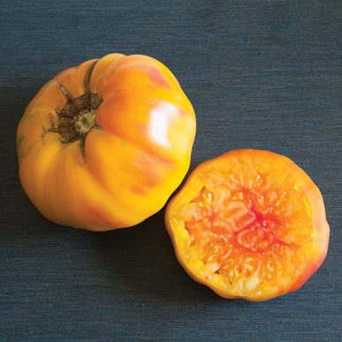 Striped German Grafted Tomato
