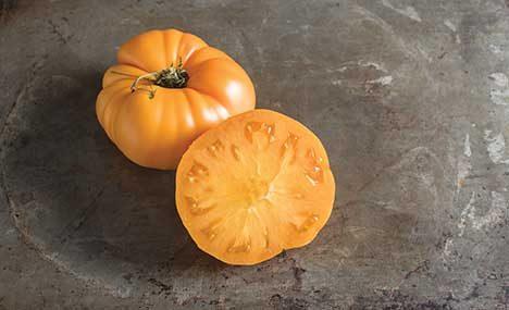 Brandywine Yellow Tomato