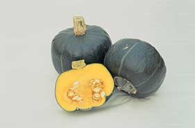 Buttercup (Burgess Strain) Squash, Winter