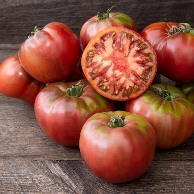 Cherokee Carbon Grafted Tomato