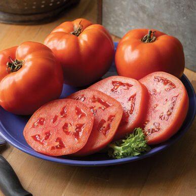 Grand Marshall Tomato