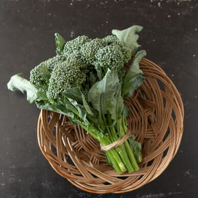 BC1611 Broccoli