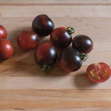 Indigo Cherry Drops Grafted Tomato
