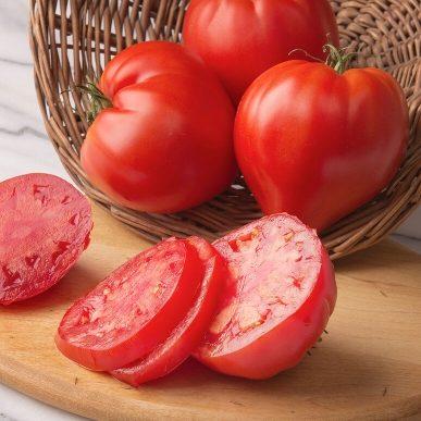 Cauralina Grafted Tomato