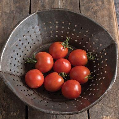 Glacier Grafted Tomato